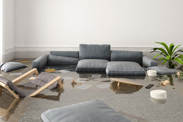 The Ultimate Guide to Water Damage Repair in Philadelphia
